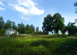 Matsesgarden