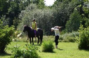 ©Riitta Tjörneryd- Linda dansar med hästen Björk